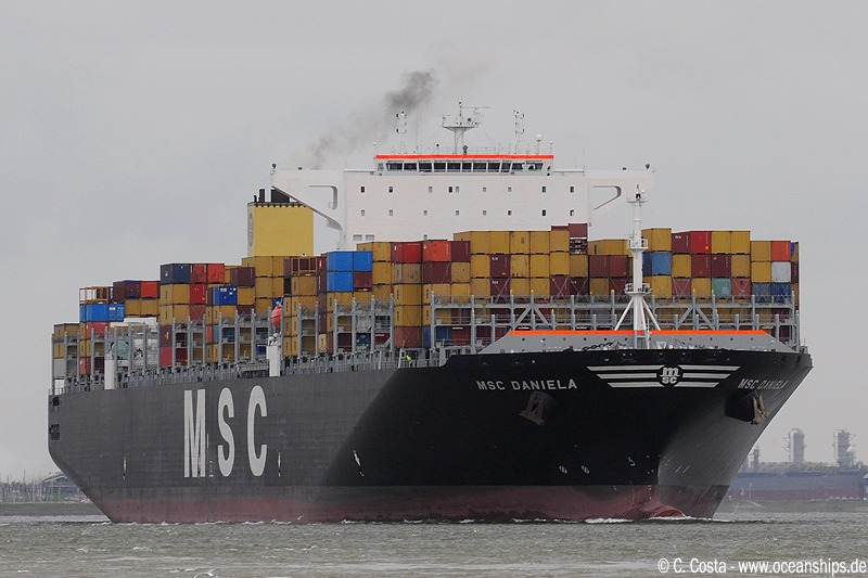 MSC Daniela is passing Griete bound for Antwerp.