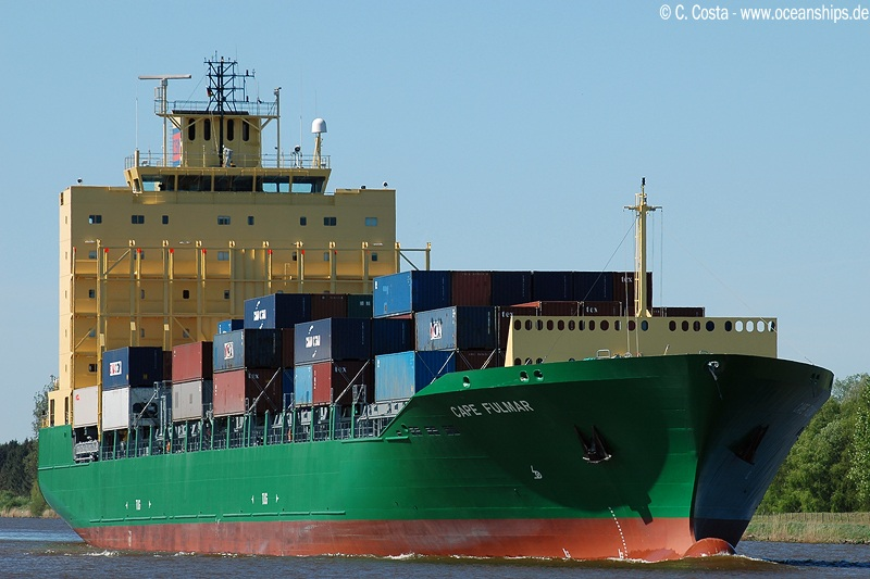 Cape Fulmar8